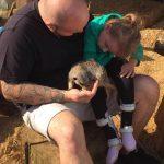 Evie meerkats 2